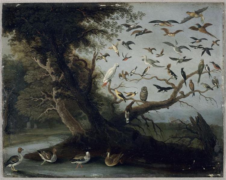 L'Arbre aux oiseaux. Van Kessel Jan I (1626-1679)