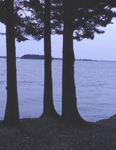 trois-arbres
