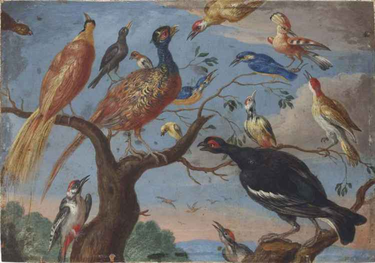 jan_van_kessel_i_a_concert_of_birds_d5847840g
