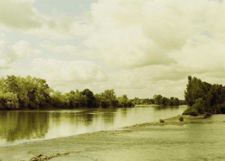 Chouzé-sur-Loire, Frankreich 2004 - © E. Esser