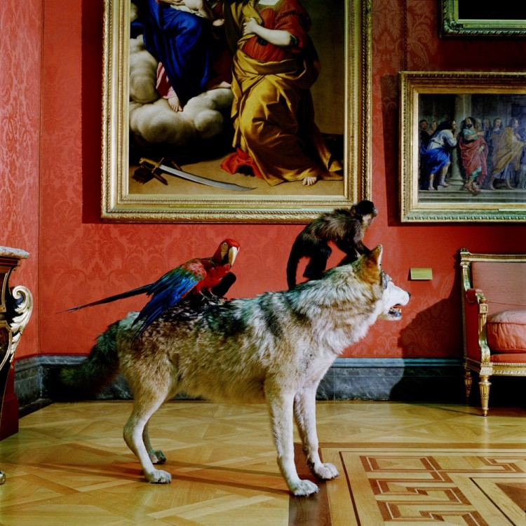 High-Art-Life-After-the-Deluge, Academies (1994 - 2005), Karen Knorr, 104,5 cm x 104,5 cmC-Type prints
