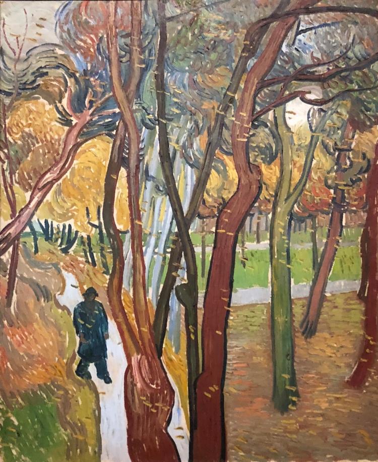 Le jardin de l'hôpital St Paul, 1889, Vincent Van Gogh (1853-1890), huile sur toile, Amsterdam, musée Van Gogh