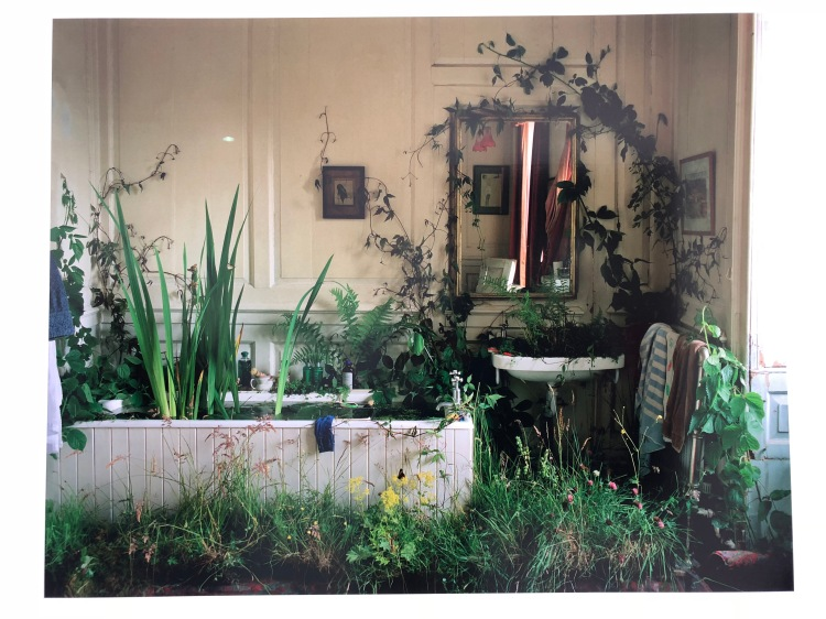 Outside Inside, Eglingham Hall bathroom, Tim Walker, Eglingham, Northumberland, 2000, 86 x 108,8 cm, Archival pigment print